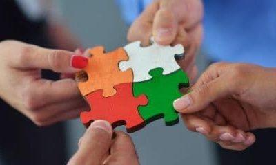 A professzionális szervezetfejlesztés ismérvei